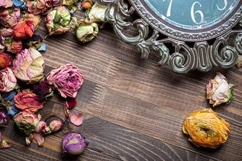 Можно ли дома хранить сухие цветы розы