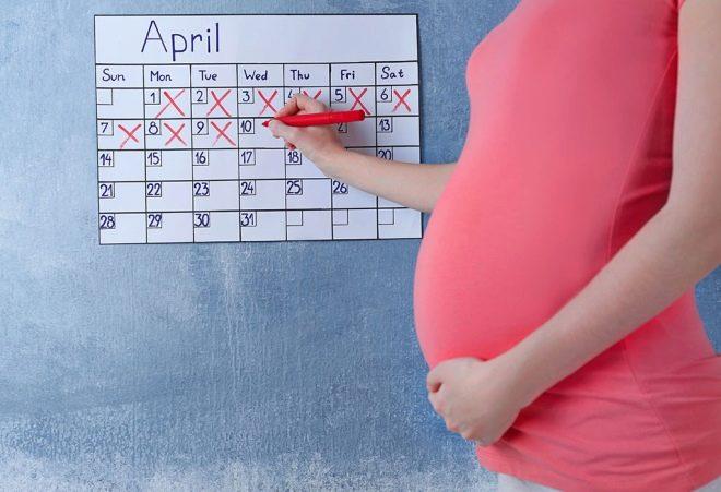 Рассчитать роды по дате зачатия калькулятор