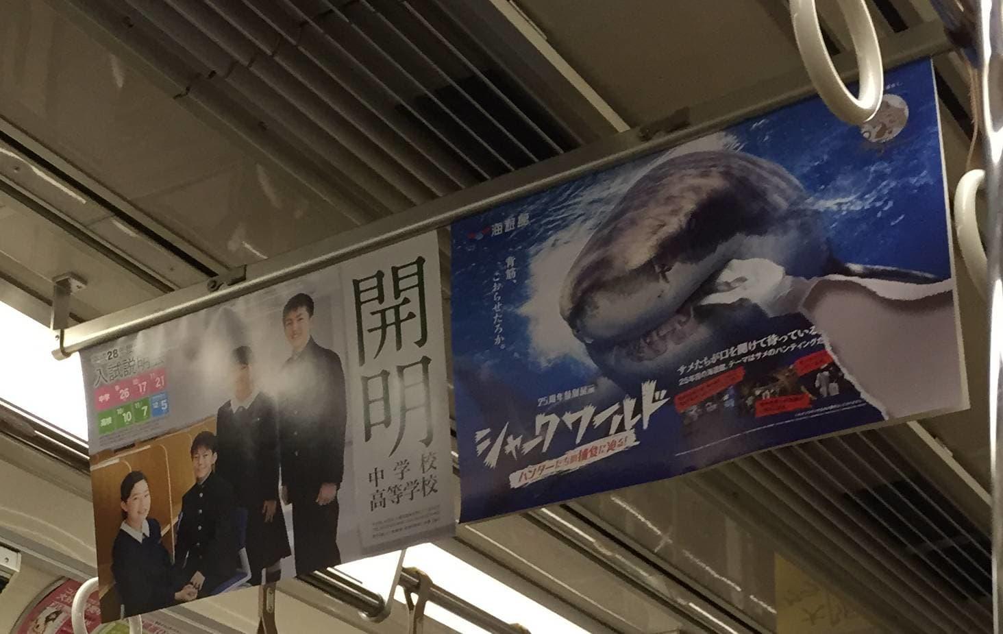 中吊り広告(same)