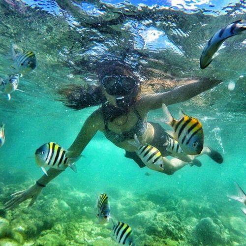 paket tour snorkeling jogja