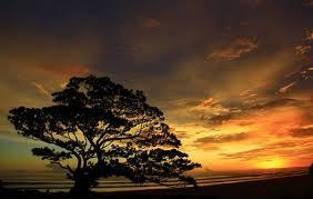 sunset pantai gunungkidul