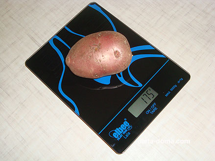 Вес средней картошки