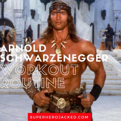 Arnold schwarzenegger workout plan