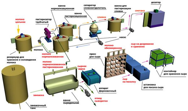 Изготовление сыра на производстве