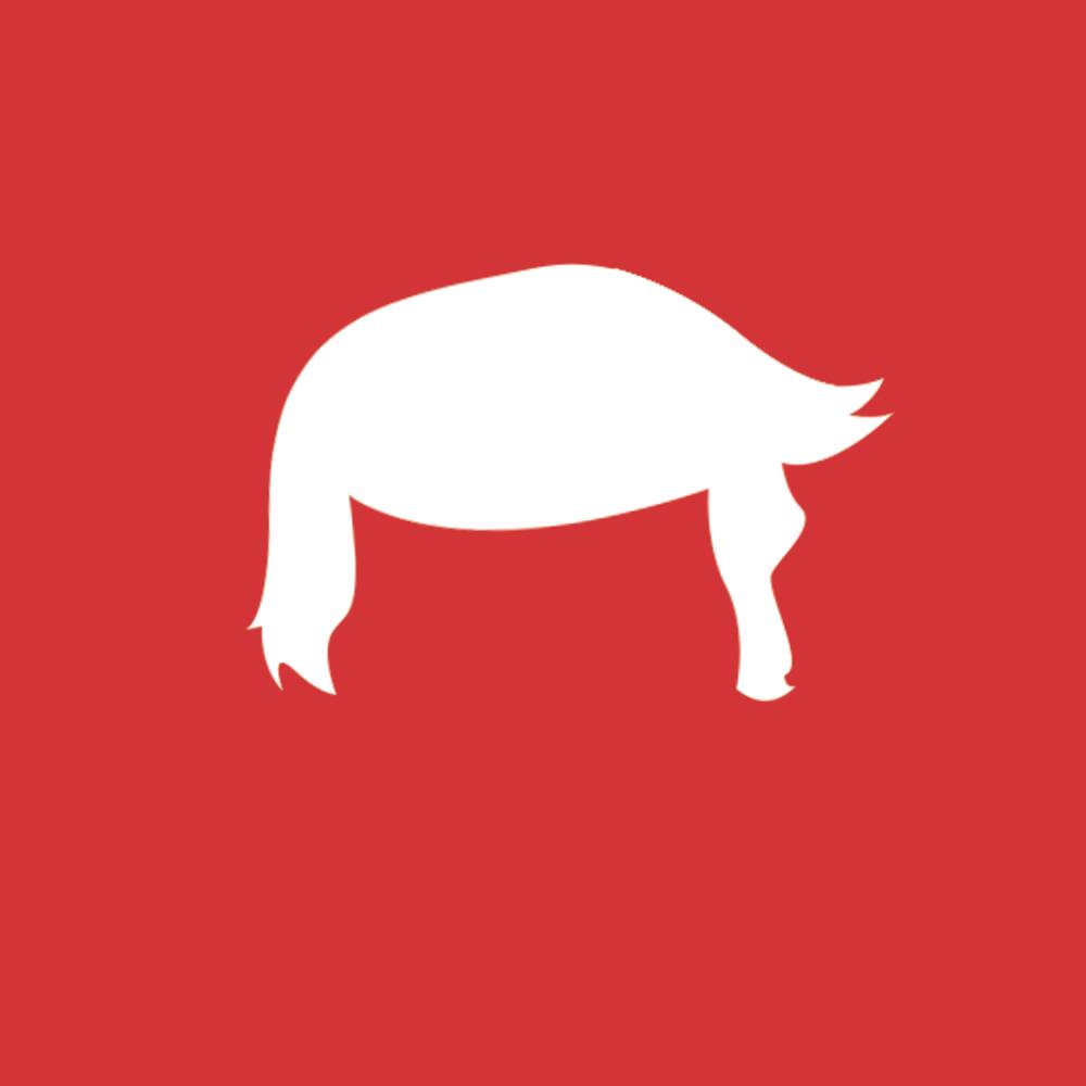 Donald trump hair app