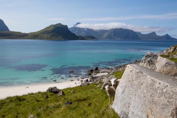 Haukland Beach Norwegen