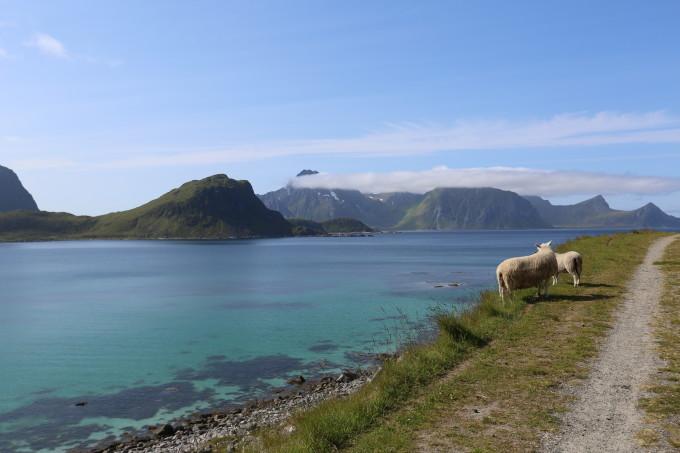 Lofoten<br/> Norwegen