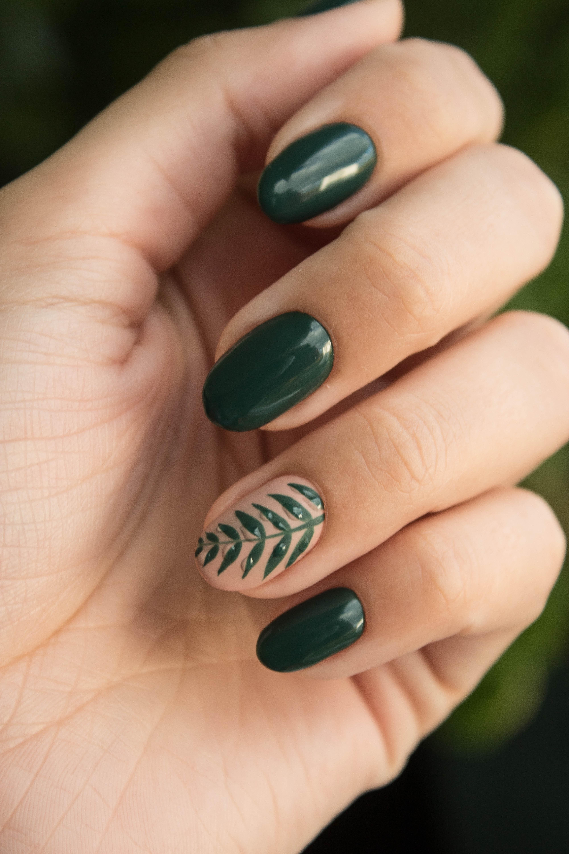 Haute nails wilmette
