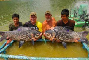Паттайя рыбалка