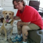 In-Home Pet Sitters Naples FL (239)465-6295