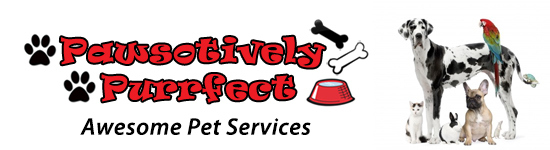 Pawsotively Purrfect - best pet sitters in Ft Myers!