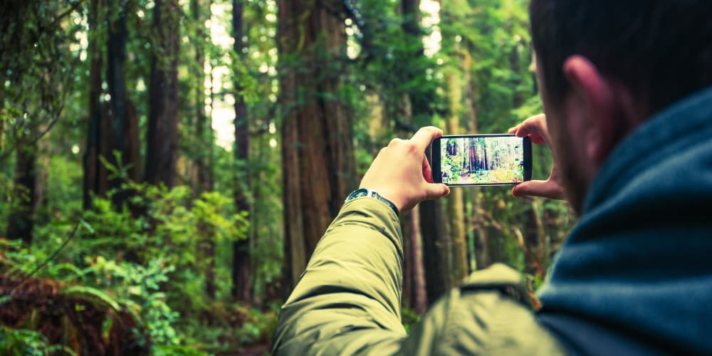 Top Picks for the Mobile Photographer