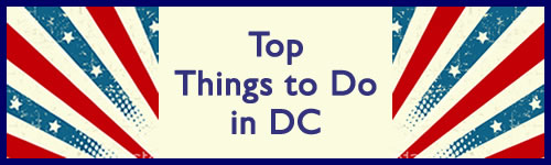 Things to Do in DC for Disabled People