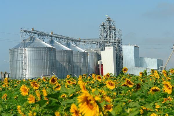 Сельское хозяйство бизнес идеи