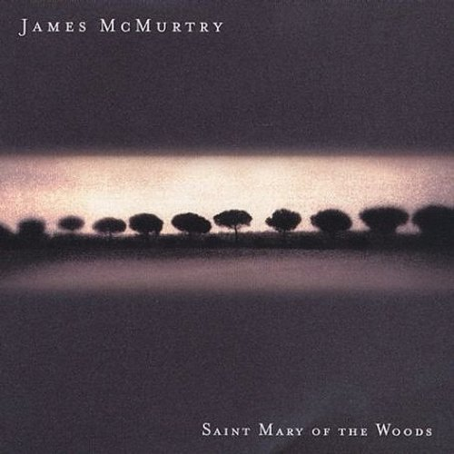 James mcmurtry st mary of the woods