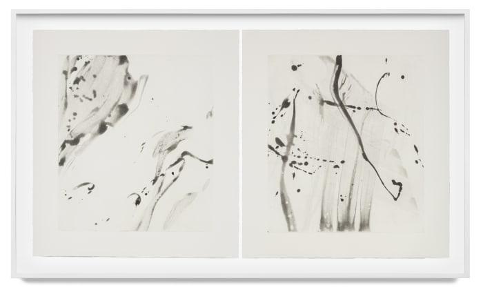 Untitled I, II by Jason Martin