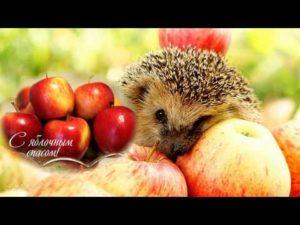Сценарий на праздник яблочный спас