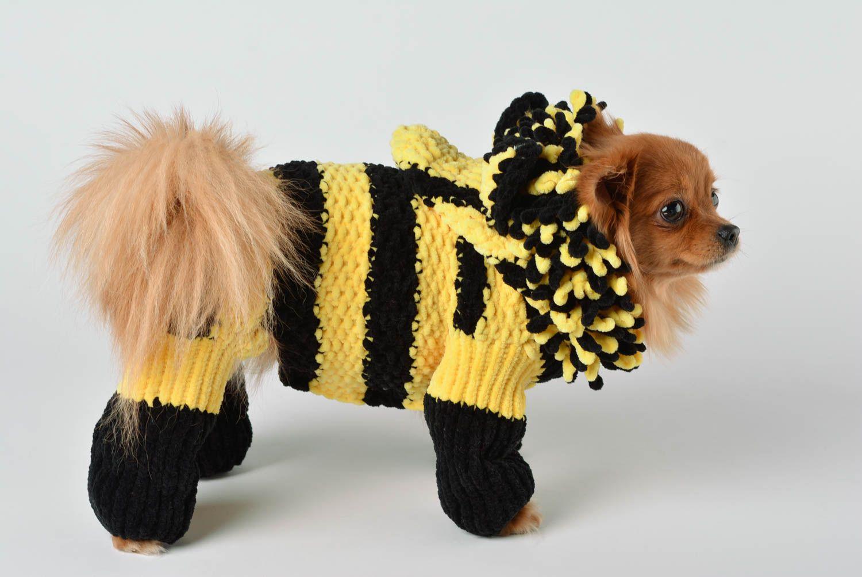 Шапочка для собаки крючком схема