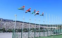 Флаги Сирии и Абхазии