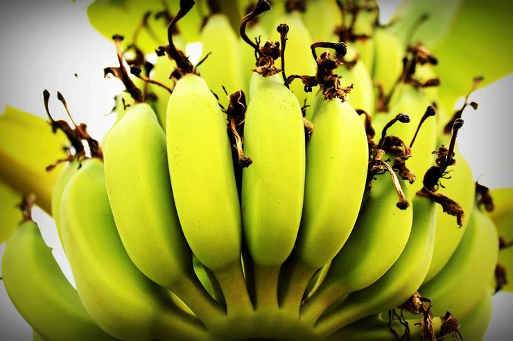 Как есть зеленые бананы
