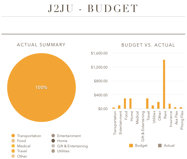 Our First Budget