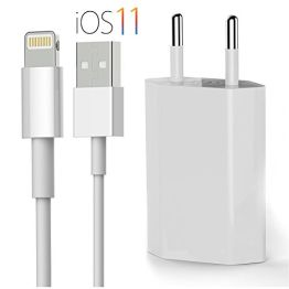 OKCS ORIGINALS iPhone Ladeset [USB Ladekabel mit Netzteil] 1 Meter für iPhone X, 8, 8 Plus, 7, 7 Plus, 6, 6s 6 Plus, 5, 5s, iPad 4, Pro ,Mini, 2- Weiß - 1