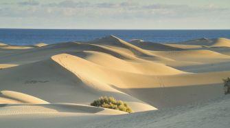 Guía de Gran Canaria