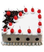 Blackforest Divine Cake Half kg