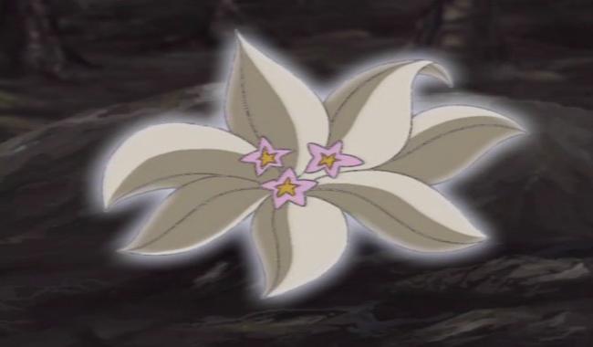 01: Mandrake Mandrake