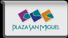 La plaza san miguel