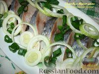 Фото к рецепту: Сельдь соленая (пряный посол)