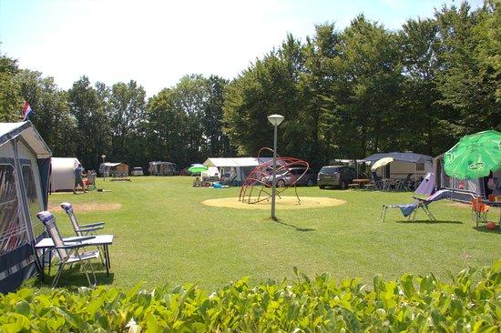 Camping de watertoren pinkpop