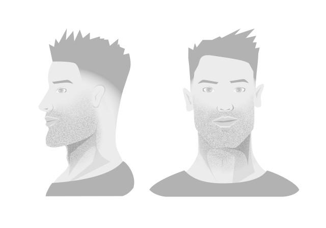 Виды борода фото