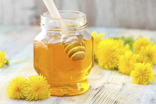 Мед из одуванчиков чем полезен