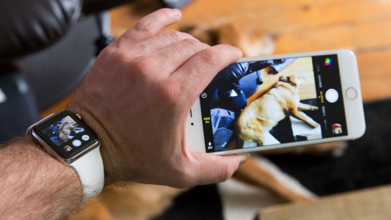 With Camera app you can take photos from iPhone controlling the process remotely from Watch.
