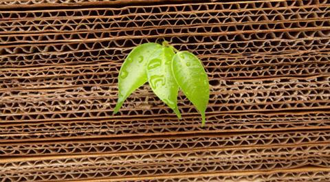 sustainability-corrugated_boards.jpg