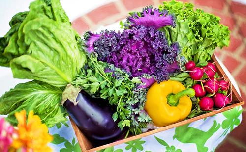 Баклажан, жёлтый перец и другие овощи