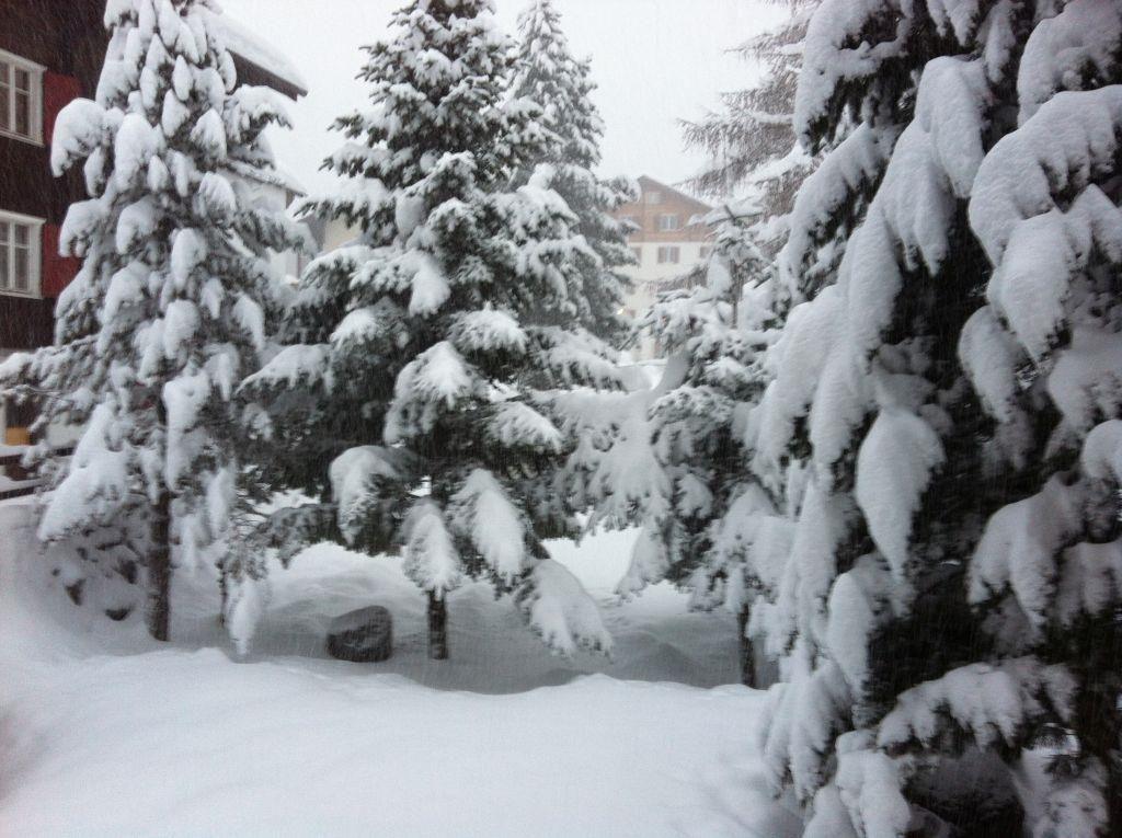 Winter Blick aus dem Fenster