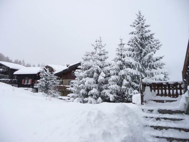 Winterfoto hinter dem Haus