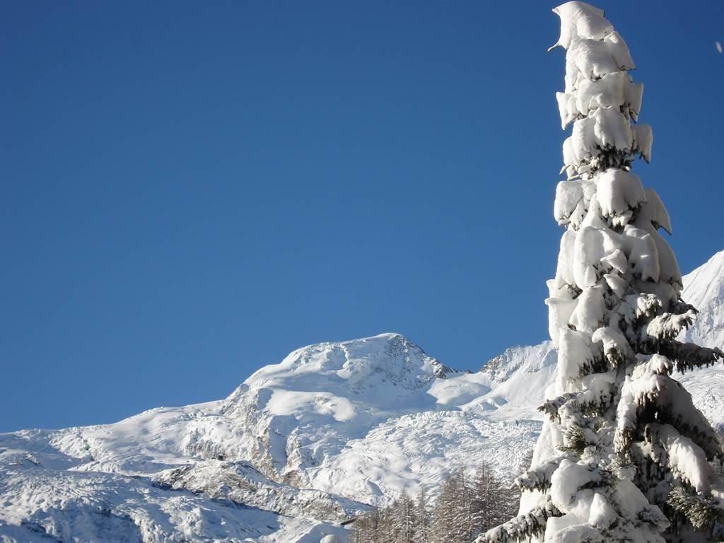 Alphubel Winter