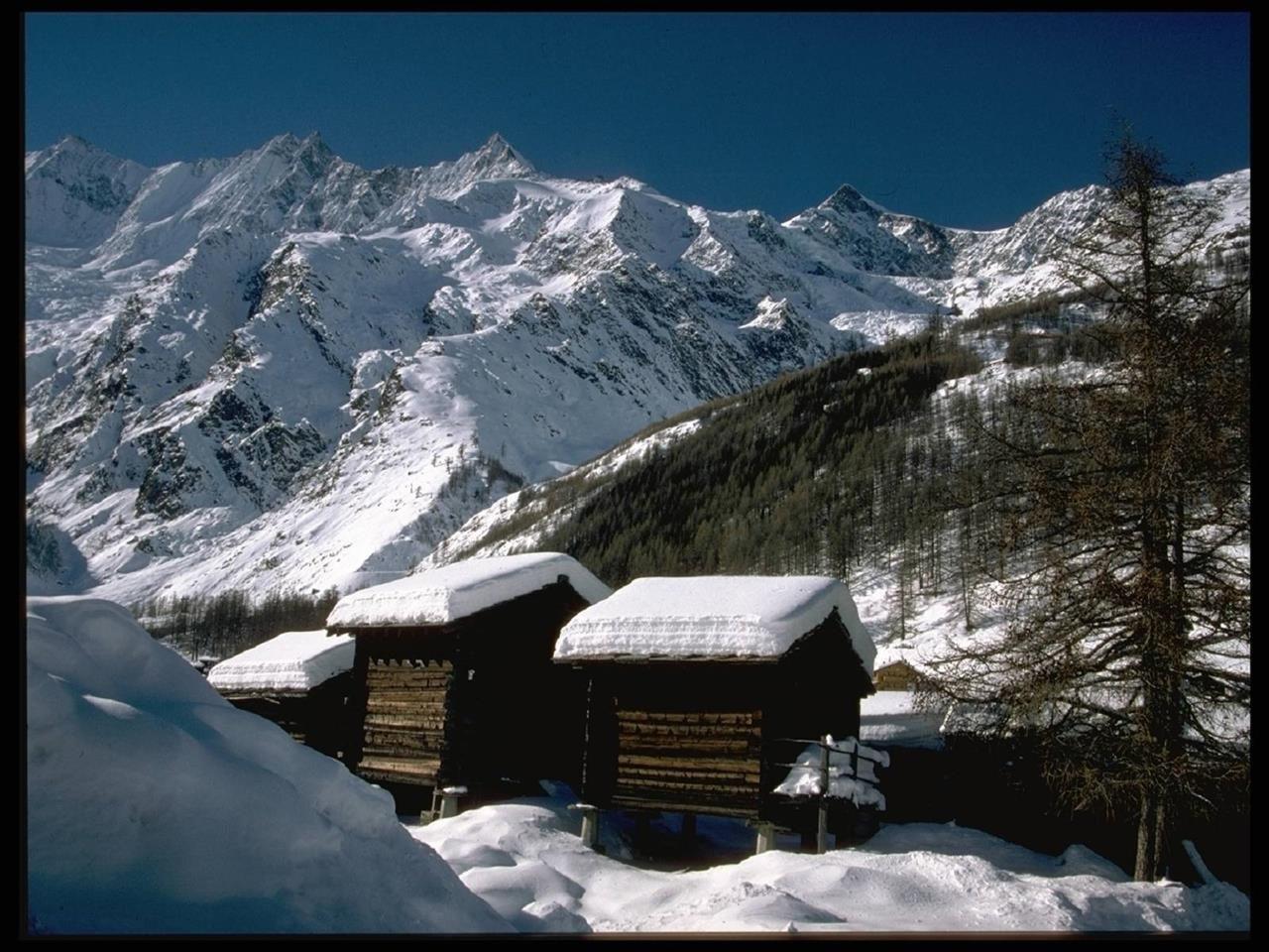 Winteraufnahme mit Stadeln
