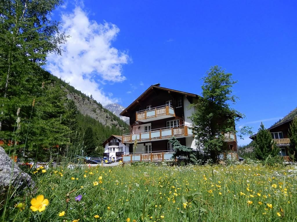 Alpenperle Sommer