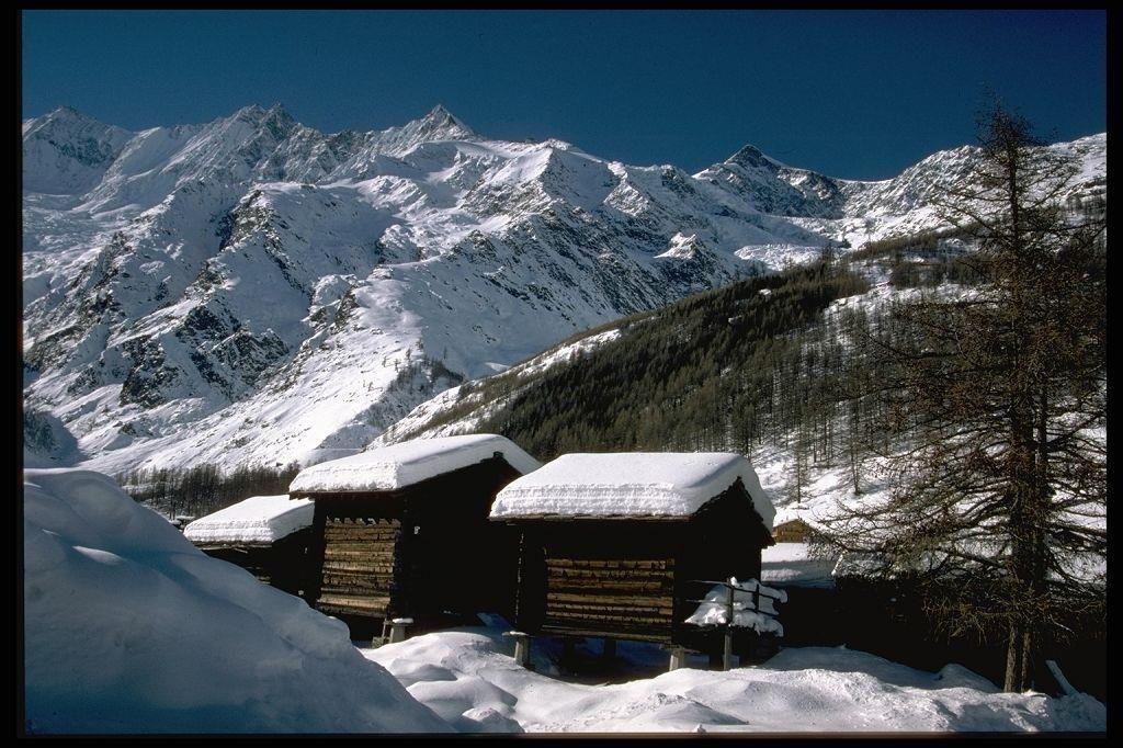 Winteraufnahme mit Stadeln - Kopie