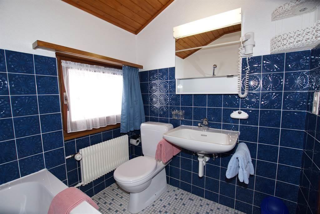 WC / Lavabo / Haartrockner