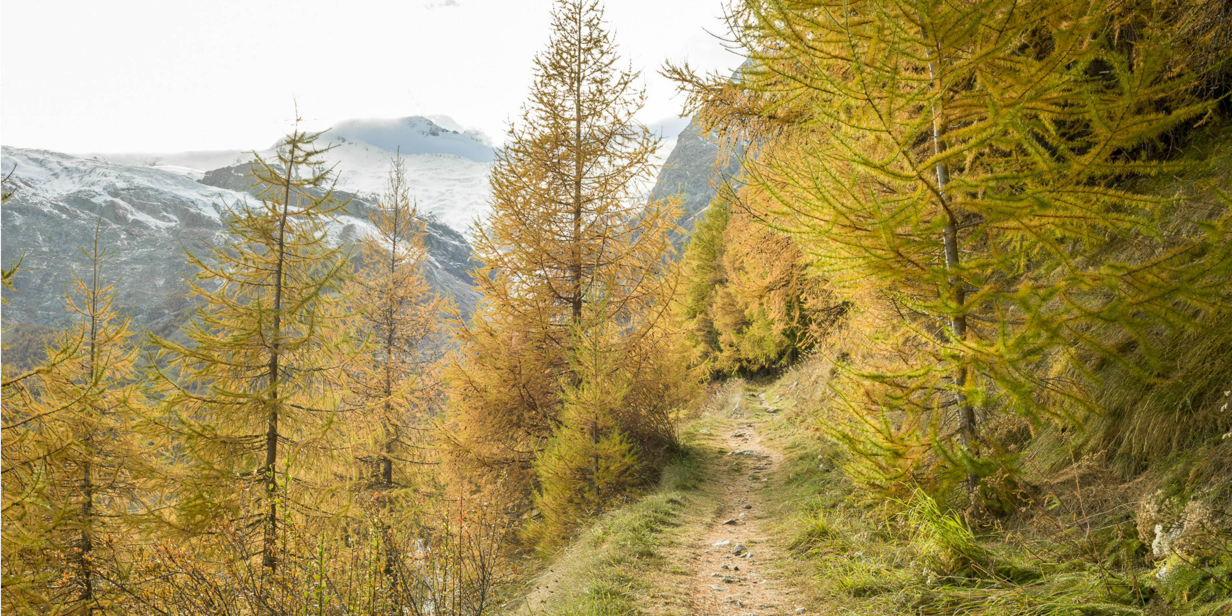 Herbstwandern Saas-Fee