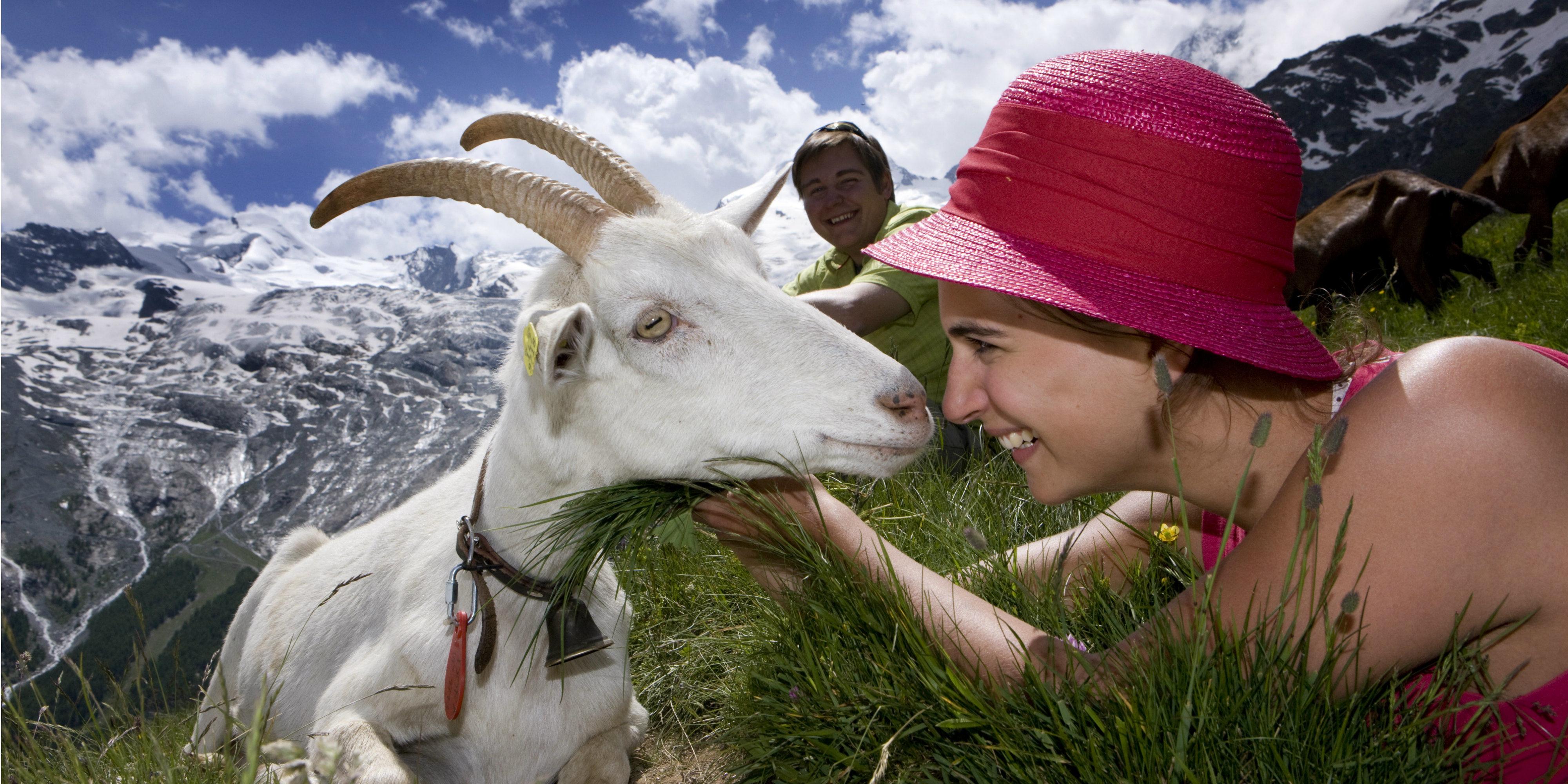Kurzurlaub Wandern bis zu 4545m über dem Alltag nur in Saas-Fee Saastal