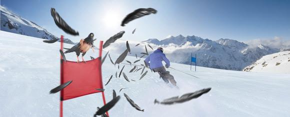 Adrenalin Cup Saas-Fee in der Freien Ferienrepublik Saas-Fee