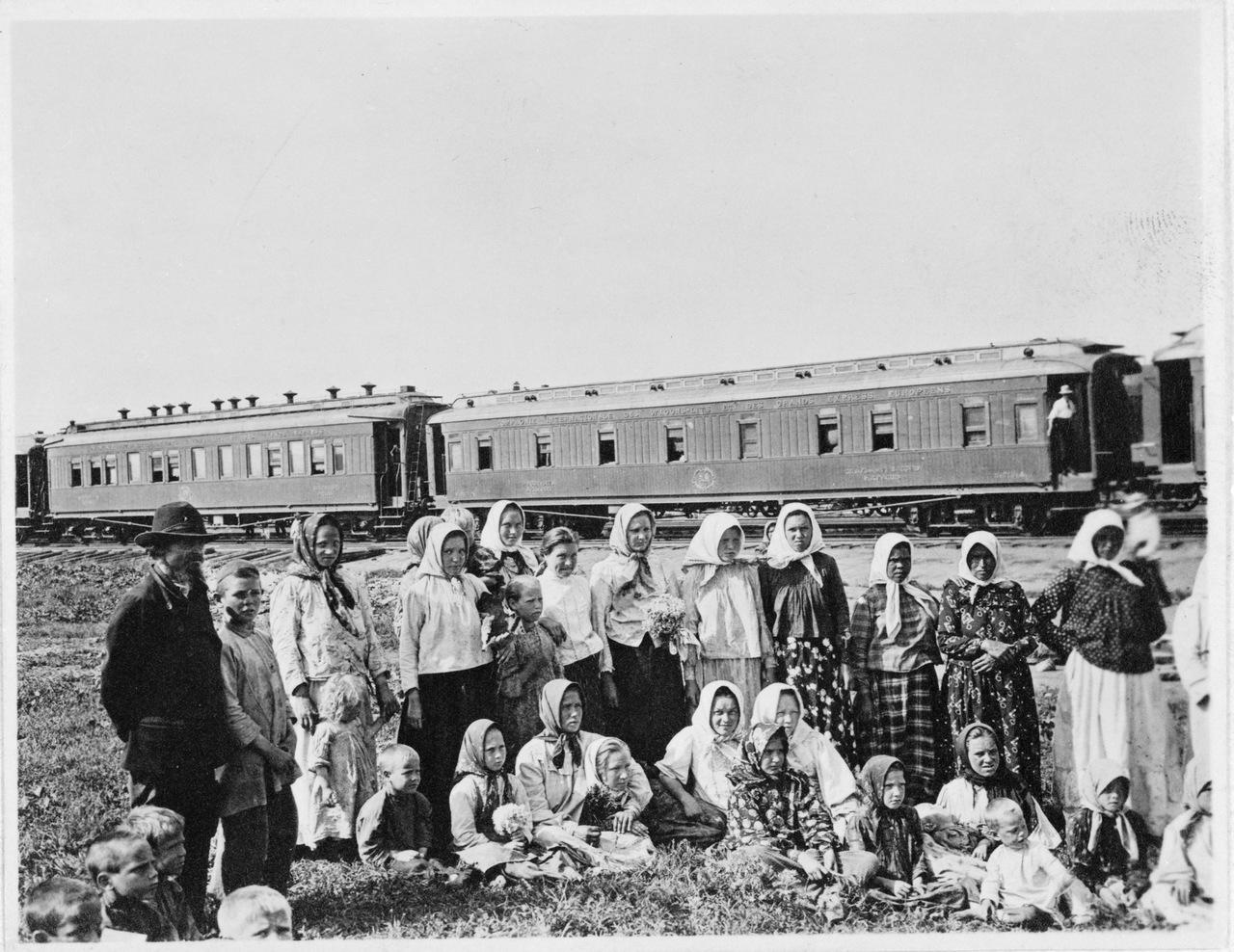 Переселенцы в Сибири