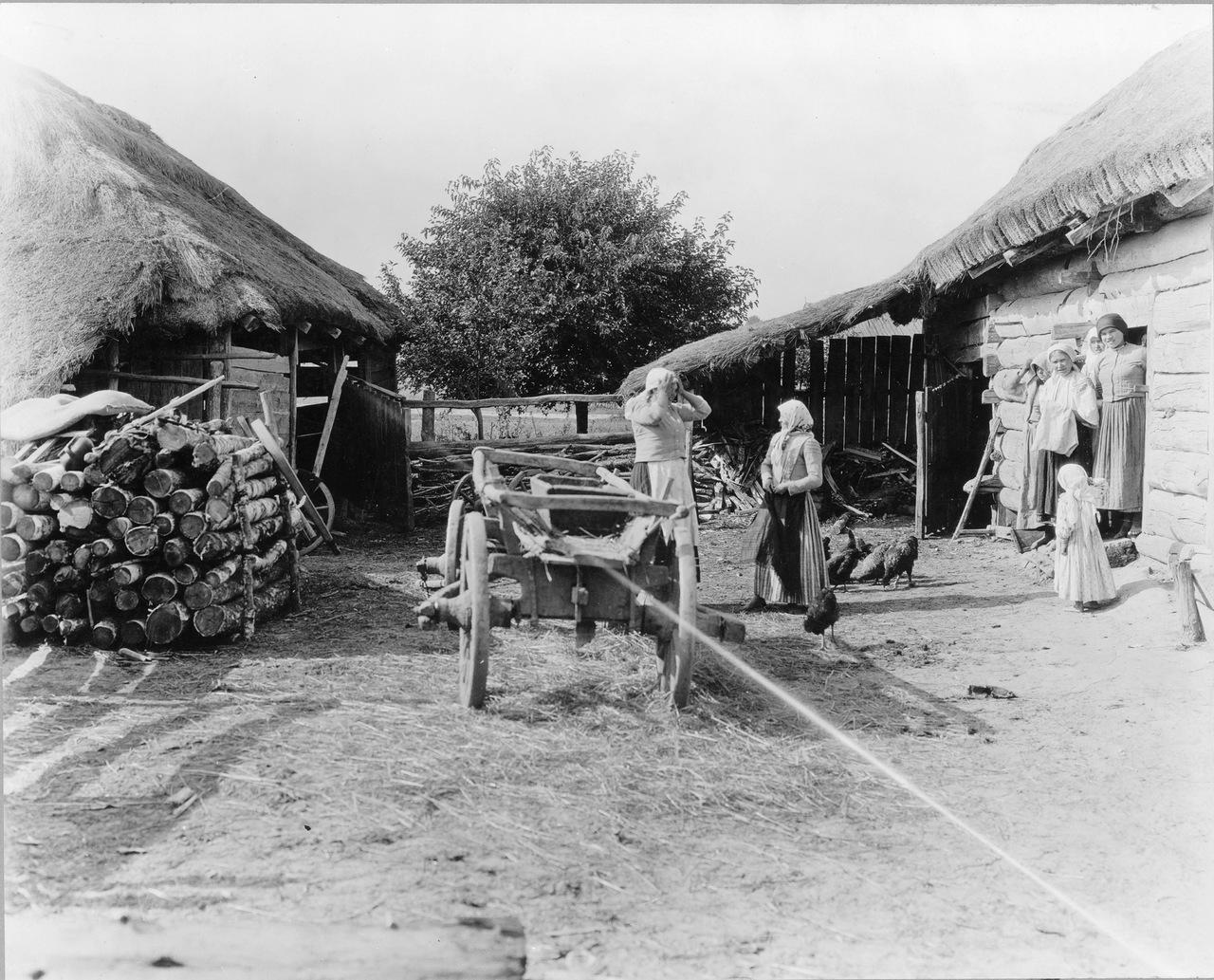 Во дворе крестьянского дома
