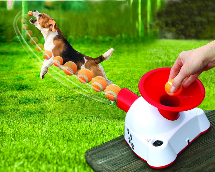 Automatic Ball Thrower for Dogs w Balls Pet Dog Puppy Interactive Fetch Machine